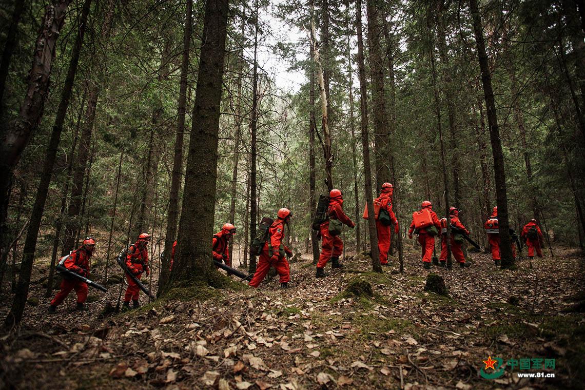 大考当前,森林卫士不忘初心守护那片绿